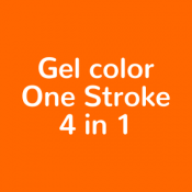 Gel color One Stroke 4 in 1 (55)