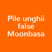 Pile unghii false Moonbasa